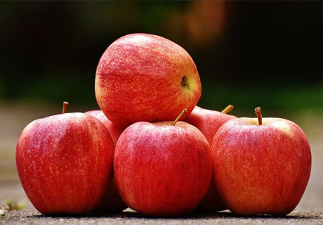 MOLDOVAN FRUIT GROWERS MAY SUPPLY APPLES TO ISRAEL