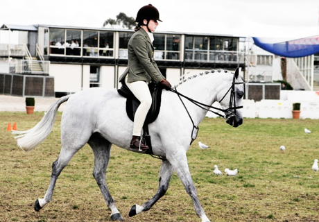 ​YOUNG MOLDOVAN EQUESTRIANS TO BE TRAINED AT MOSCOW RIDING SCHOOL